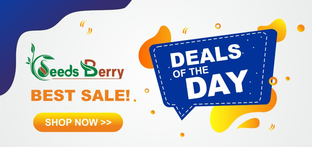 Seeds Berry Deals of The Day